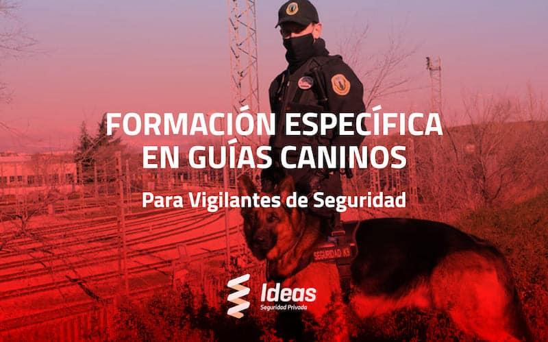 Formación Específica en Guías Caninos para Vigilante de Seguridad